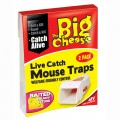 STV big cheese live catch mouse traps pack of 2