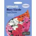 Unwins busy lizzie seeds (bright shades)